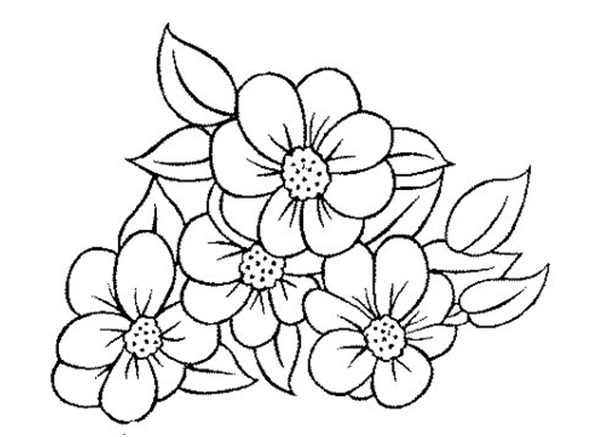 bordado livre riscos florais para iniciantes