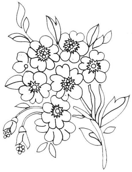 risco para bordado livre flores