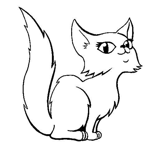 desenho de gato para imprimir