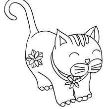 gatinho kawaii para colorir