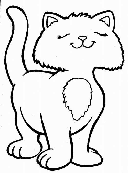 gato para colorir e pintar