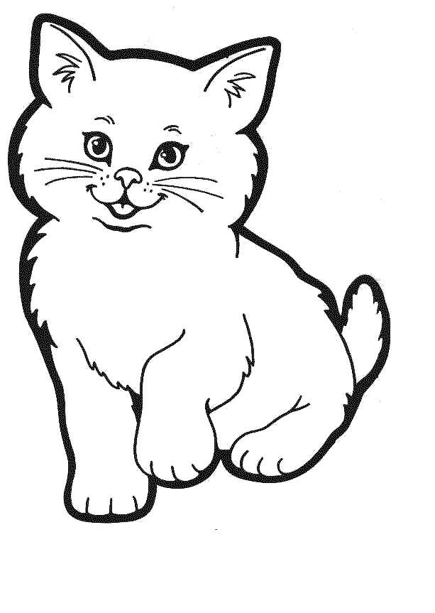 imagem de gato para imprimir