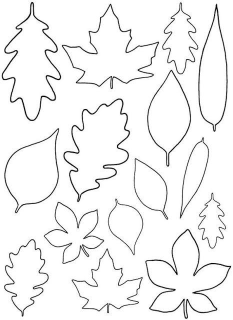 molde de folhas para eva