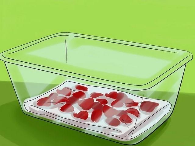 como conservar petalas de rosas na geladeira
