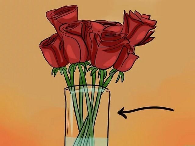conservar rosas em local fresco