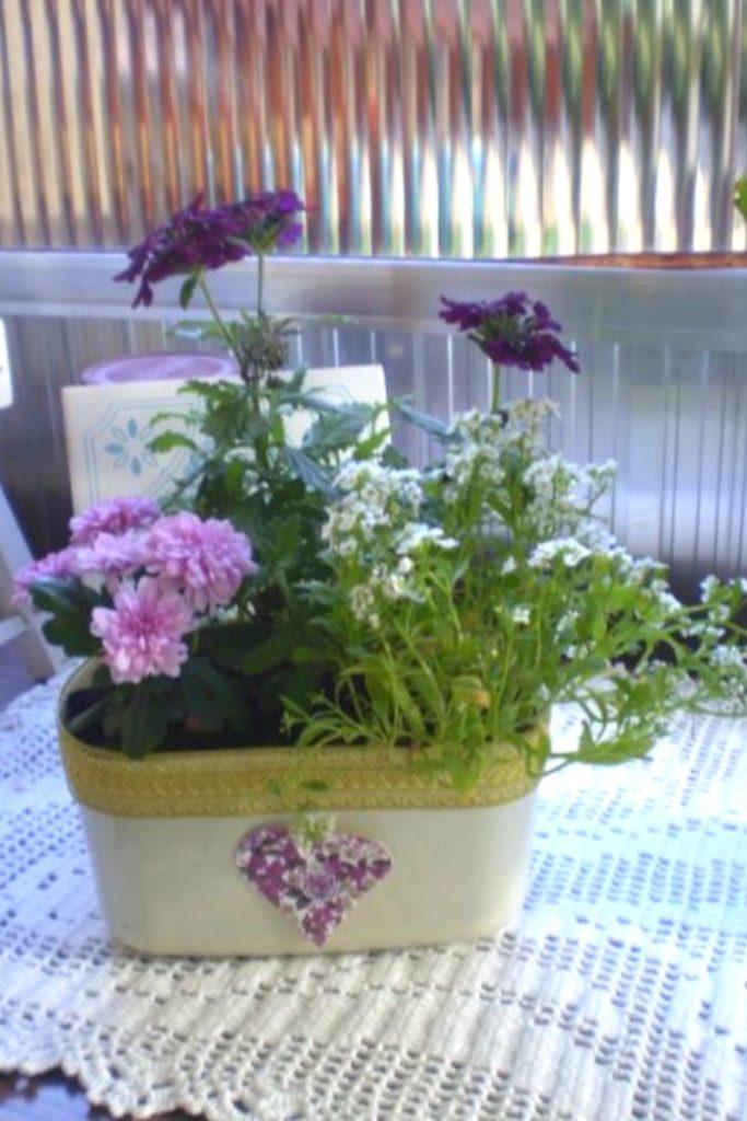 vaso de planta com pote de sorvete reciclado